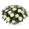 Одиночные Хризантемы в корзине на похороны