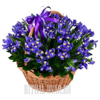 Корзина с Ирисами голубого оттенка на похороны