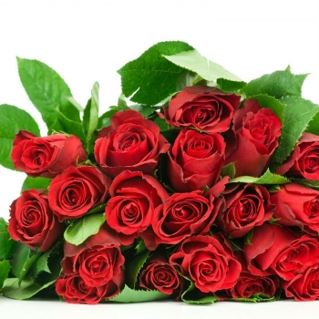 Корзина натуральные Розы, Папоротник, Робелини