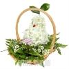 """Живые цветы в виде игрушки на похороны """"Ангелочку"""""""
