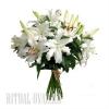 Лилии живые для похоронной церемонии